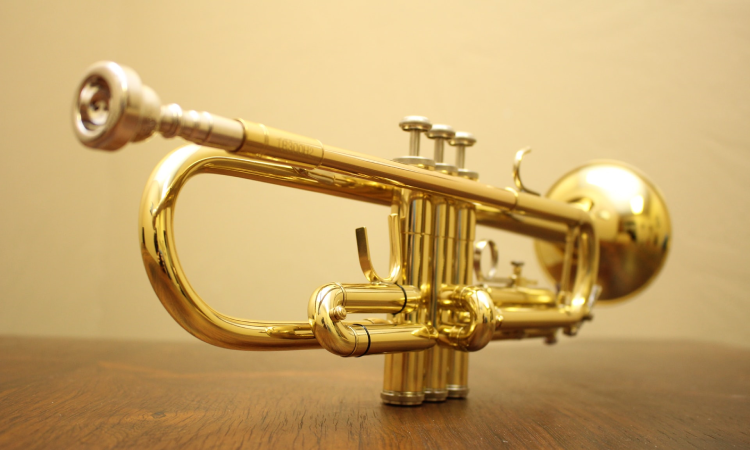 how-much-does-a-trumpet-cost-image-1